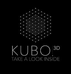 Kubo logo 4